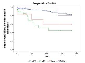 Gráfico V: Supervivencia libre de enfermedad a 5 años según tipo de melanoma, p