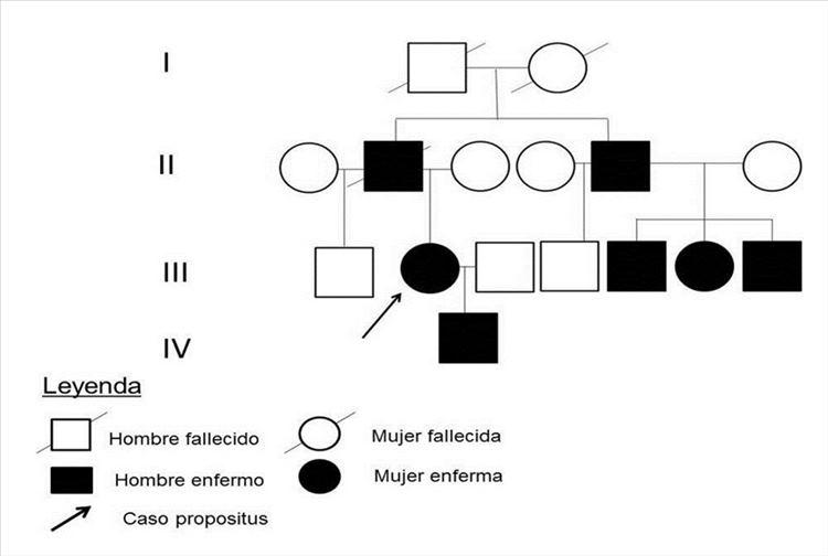 Figura 3: Árbol genealógico
